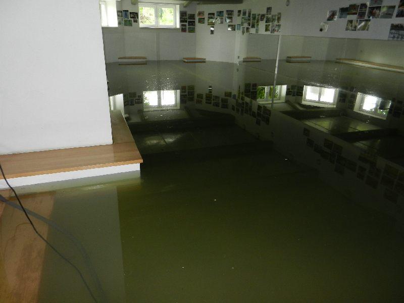 hochwasser04062013016